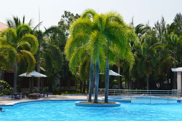 бассейн Long Thuan Resort 3*
