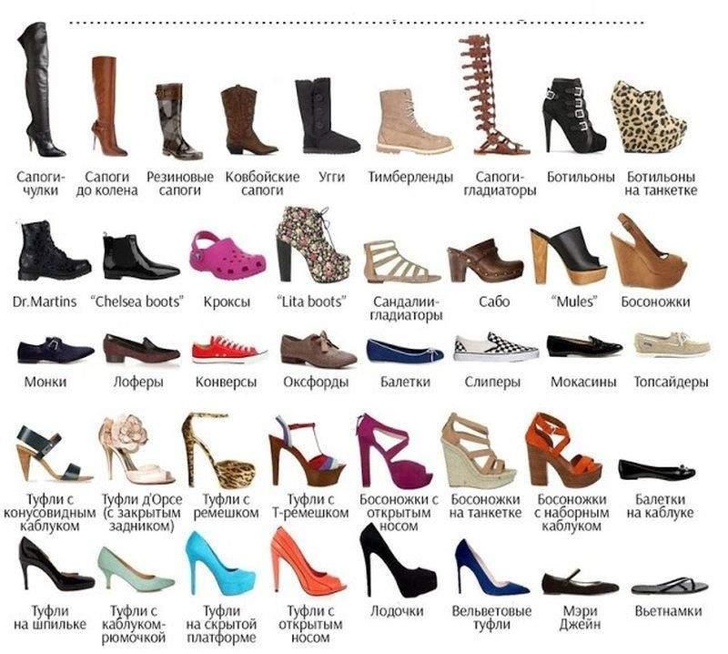 5 виды обуви