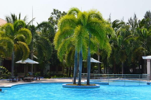 бассейн Long Thuan Resort 3*