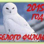 И опять С НОВЫМ ГОДОМ! Годом Белого Филина!