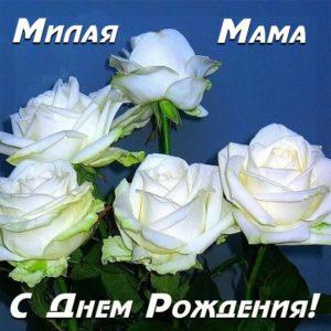 поздравить маму